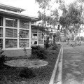 Newlands Primary School | 1951 | VIC