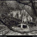 McIntyre House | 1955 | VIC
